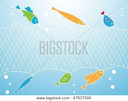Fish And Fishing Net