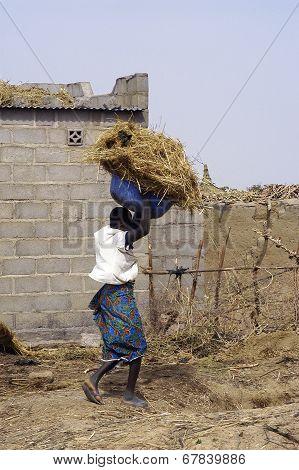 A Woman From The Village In Burkina Faso Kokemnoure
