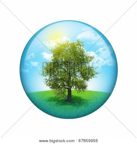 Trees and green landscape. Spherical glossy button