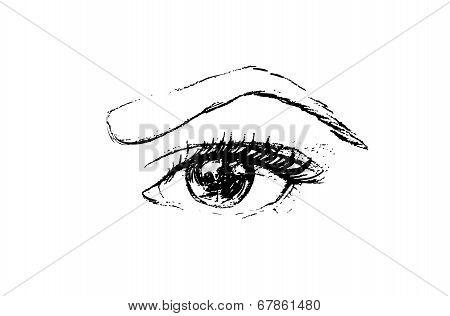 Hand Drawn Vector Illustration - Eye. Make Up