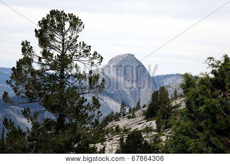 Half Dome - Yosemite CA