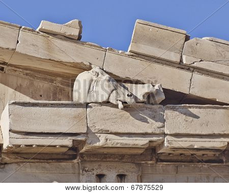 Athens Greece, Parthenon detail horse head