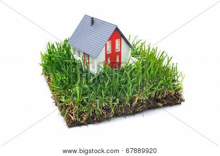 House In Green Grass
