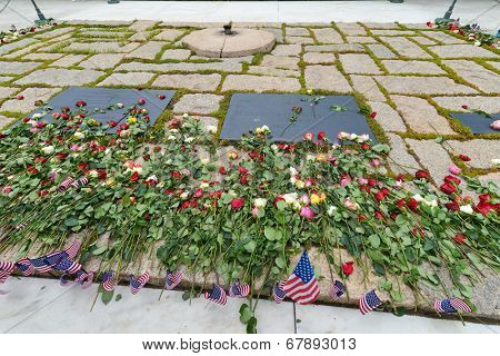 ARLINGTON, VA - MAY 28, 2013: President John Fitzgerald Kennedy Gravesite in Arlington National Cemetery. The visitors throw roses to commemorate the Memorial Day.