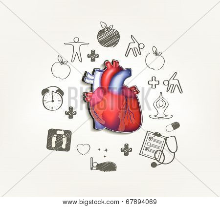 Healthy Heart  Hand Drawn Tips