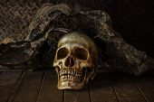 image of art gothic  - Still Life with a Skull concept on the art - JPG