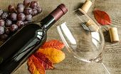 picture of shiraz  - Red Wine On The Wooden Table Closwe Up