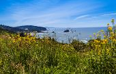 image of klamath  - Beach at Del Norte Coast State Park in California north of Klamath