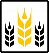 foto of bakeshop  - isolated icon with yellow wheat and black darnel symbol - JPG