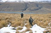 stock photo of southern  - Hunters on foot looking for Himalayan tahr in the Southern Alps of New Zealand
