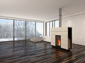picture of insert  - Large spacious empty living room interior with a fire burning in an insert woodburner  - JPG