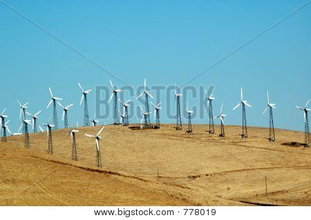 skyline full of windmills