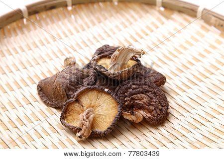 Dried Shiitake Mushroom
