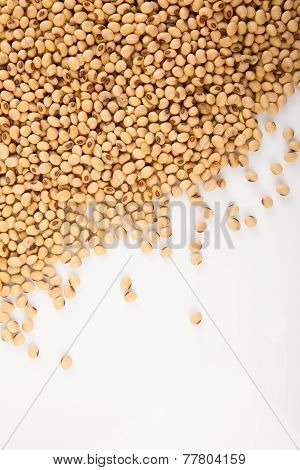 Soybeans With Copy Space