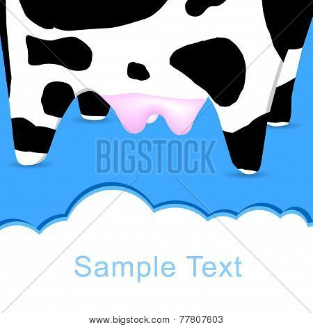 Cow's postcard for text input.