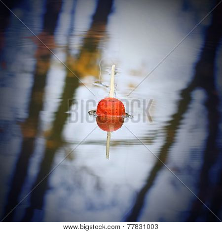 Float for fishing on the water. Angling background.