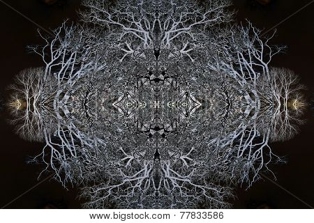 Negative Mirror Image Trees