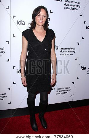 LOS ANGELES - DEC 5:  Jorja Fox at the 2014 IDA Documentary Awards at the Paramount Studios on December 5, 2014 in Los Angeles, CA