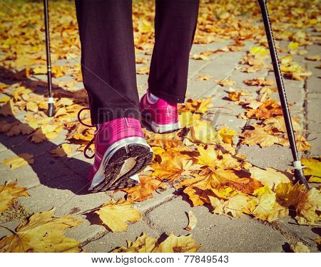Vintage retro effect filtered hipster style image of nordic walking: adventure and exercising concept - woman hiking, legs and nordic walking poles in autumn nature