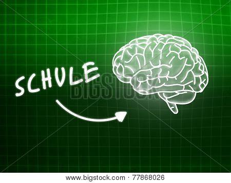 Schule Brain Background Knowledge Science Blackboard Green