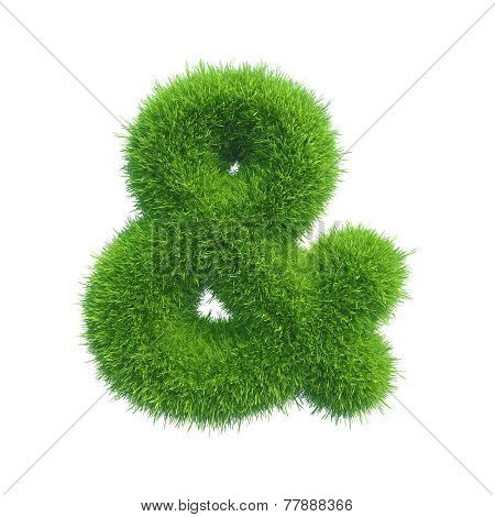 ampersand of green fresh grass isolated on a white background.