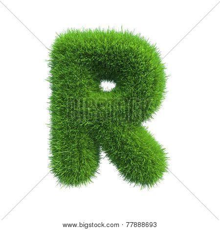 Letter r of green fresh grass