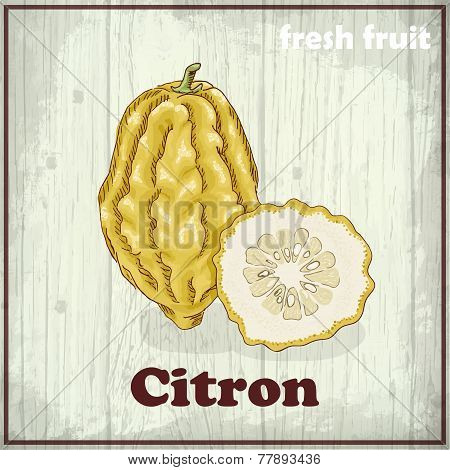 Fresh Fruit Sketch Background. Hand Drawing Illustration Of Citron
