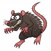 picture of maliciousness  - Cartoon malicious rat on the white background - JPG