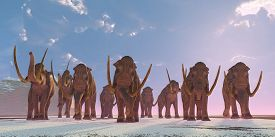 pic of gentle giant  - As winter sets in a herd of Columbian Mammoths migrate to a warmer climate - JPG