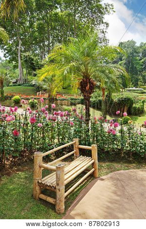 A masterpiece of landscape design - a huge and beautiful park in Thailand. Palm trees, flower beds and a comfortable bench