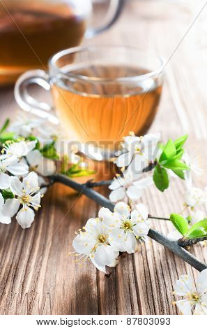Tea And Cherry Blossom