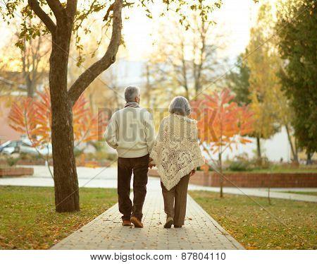 Elderly couple in autumn park