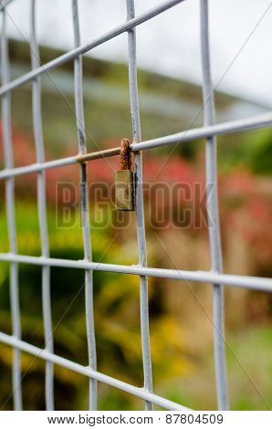 Closed Padlock Locked Onto A Square Metal Fence - Vertical