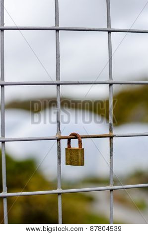 Padlock Locked Onto Fence With Shallow Focus - Vertical