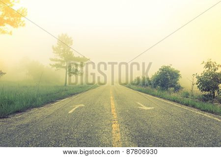 Road in fog with trees ( Filtered image processed vintage effect. )