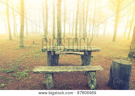 Wood table in forest tree  during a foggy day  ( Filtered image processed vintage effect. )