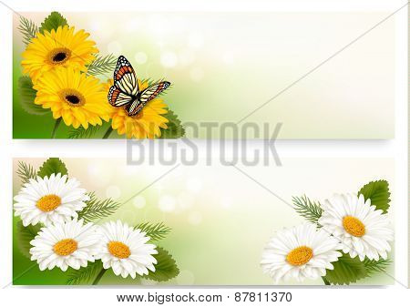 Summer banners with colorful flowers and butterfly.