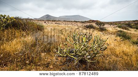 beautiful mountain landscape on the island of Lanzarote, Canary Islands