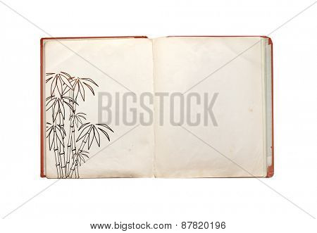 Old book. Object isolated on white background