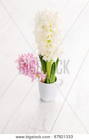 border with beautiful hyacinth - flowers and plants