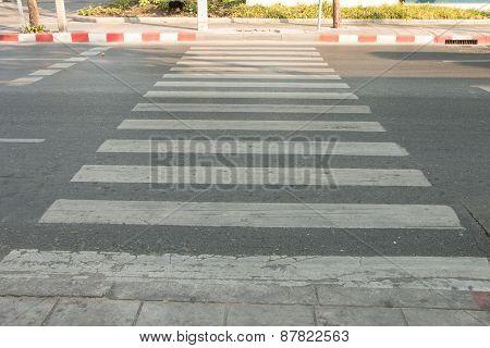 Zeebra Crossing