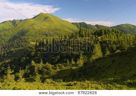 Alpine views. Summer landscape in the mountains