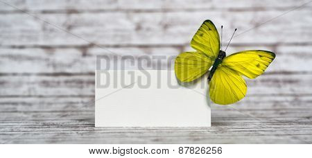 Empty White Rectangular Card with Light Colored Butterfly Insect on Upper Right Corner, Emphasizing Copy Space for Texts, Placed on a Wooden Table.