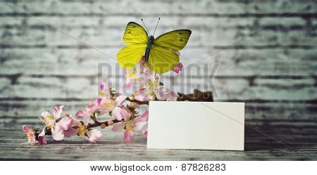 Small Blank Note Paper with Yellow Green Butterfly on Beautiful Orchid Flowers Placed on Top of a Wooden Table with Abstract Background.