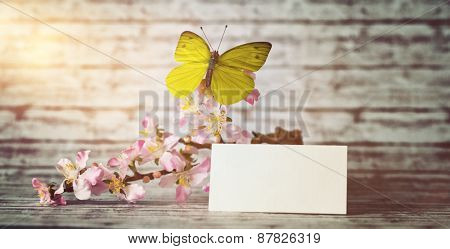 Empty Greeting Card and Fresh Orchid Flowers with Yellow Green Butterfly on Top of Wooden Table, Illuminated with Lens Flare from Upper Left Corner of the Frame.
