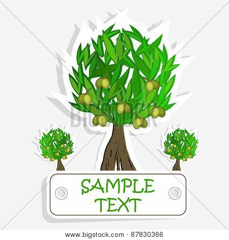 Olive oil. Vector  olive tree. For labels, pack.