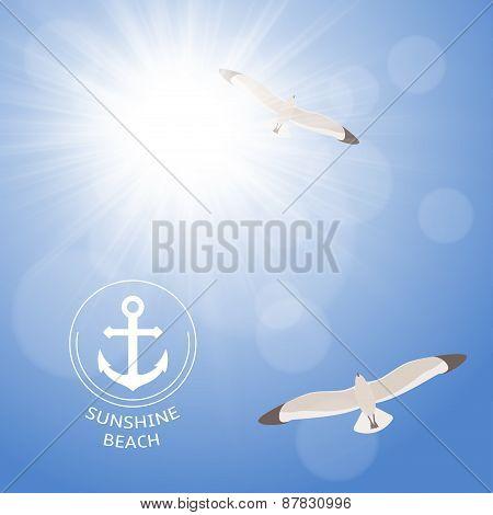 Shining summer sun with seagulls