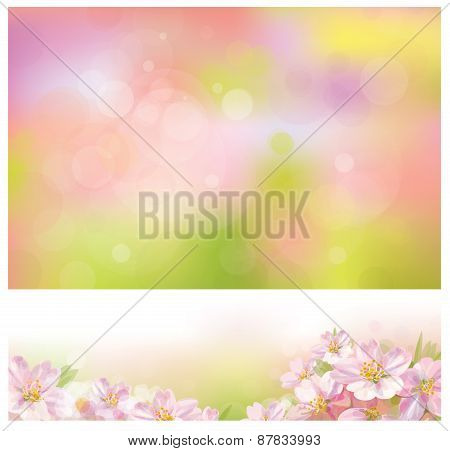 Vector spring floral backgrounds.