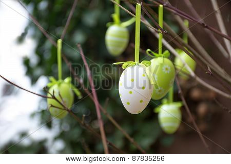 Green Patterned Easter Eggs Hanging In Bare Branches