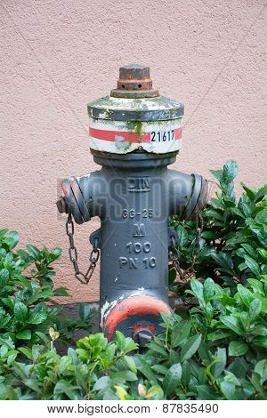 Weathered Gray Fire Hydrant